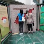 Porto Alegre exposição