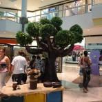 Recife exposição janeiro 2012