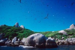 costa_atlantica