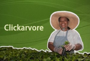 Clickarvore - O que fazemos