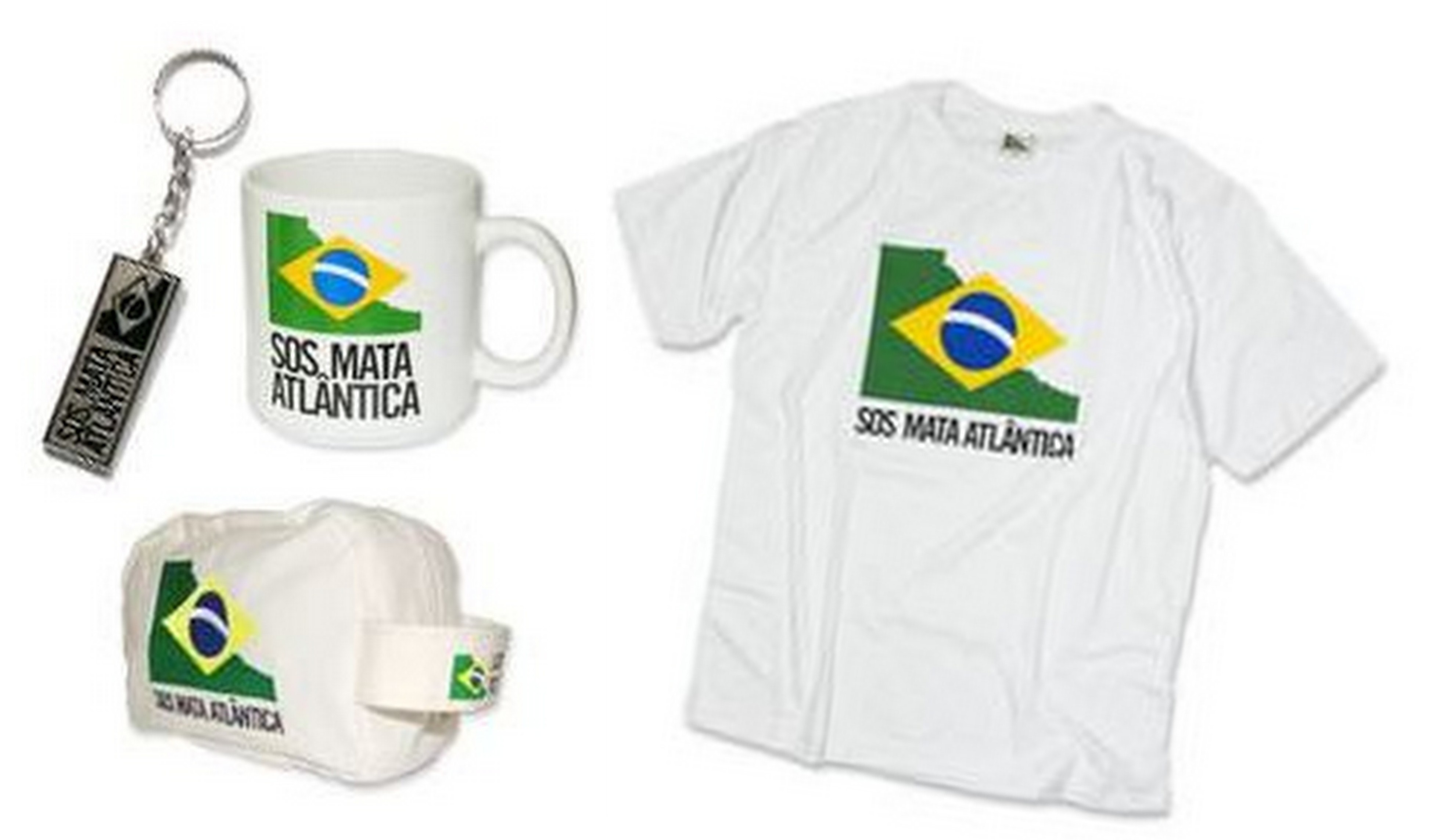 4 | SOS Mata Atlântica