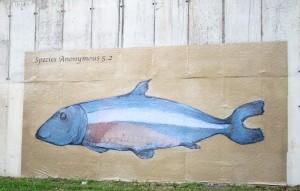 Species Anonymous por Alexandre Casagrande