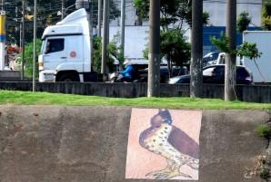 Rio Tietê
