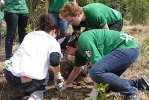 Voluntarios Starbucks
