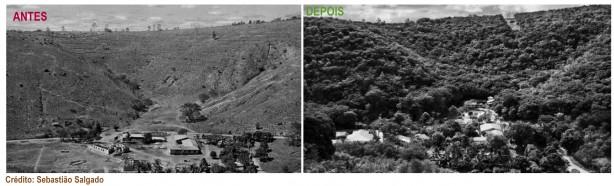 RPPN Fazenda Bulcao