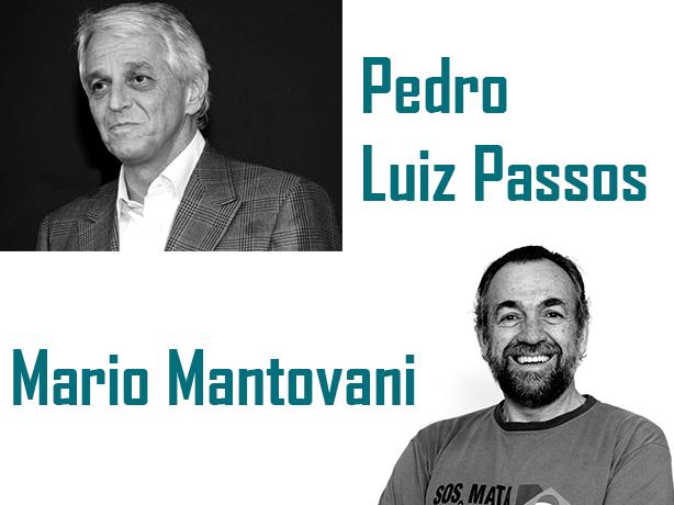 Pedro-e-Mario_artigo