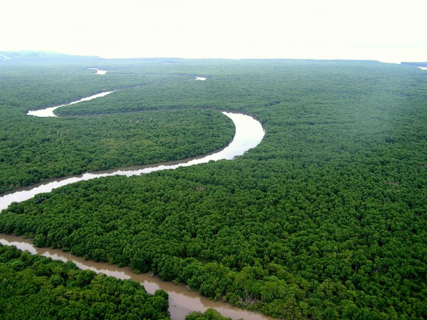 Rio Guapimirim