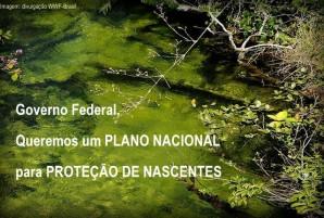 petição plano nacional de proteção às nascentes WWF