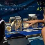 """Atividades do projeto """"A Mata Atlântica é Aqui"""".  Foto: Capim Filmes / SOS Mata Atlântica"""