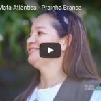 2016 - Campanha Espécies da Mata Atlântica - Prainha Branca. Narração Luciano Huck.