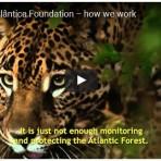 2015  - Vídeo institucional, com locução do Marcos Palmeira, legendado em inglês. SOS Mata Atlântica - how we work
