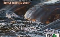 Observando os Rios1