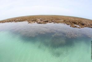 apacc2 apa costa dos corais