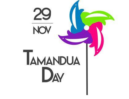 tamandua day 1
