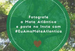 Fotografe a Mata Atlantica instagram
