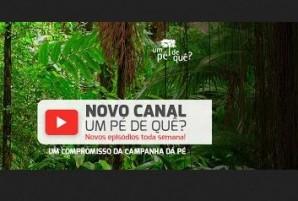 Pe de Que youtube