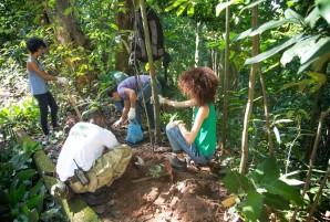 plantio mudas vam 2016 2 voluntarios