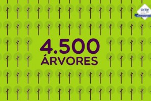4500 arvores sorine pedal de atitude