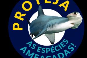 Selo V4 - portugues portaria 445 peticao