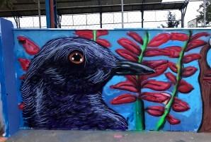 grafite 2016