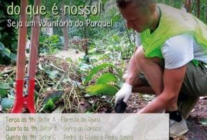 voluntariado_para_tijuca