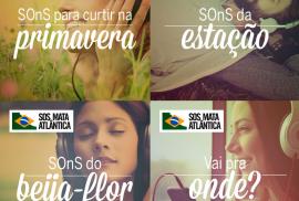 spotify_sosma_bananas