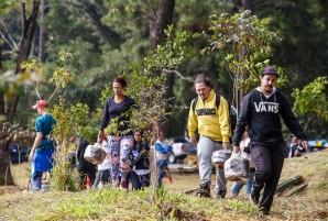 Viva-a-Mata_Inovafoto-SOSMataAtlantica-Horto-Florestal (2)
