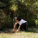 Viva a Mata 2018 - Parque Ecológico do Tietê