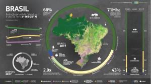 Evolução anual da cobertura e uso da terra no Brasil  Fonte: MapBiomas