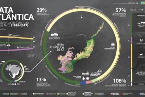 Evolução anual da cobertura e uso da terra na Mata Atlântica Fonte: MapBiomas