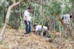 VIVA A MATA 2019 - Centro de Experimentos Florestais SOS Mata Atlântica – HEINEKEN Brasil