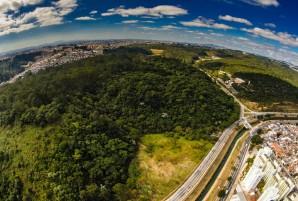 Foto: Divulgação/ Prefeitura de São Paulo