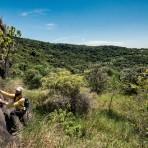 Floresta Nacional de Ipanema - Área de escalada