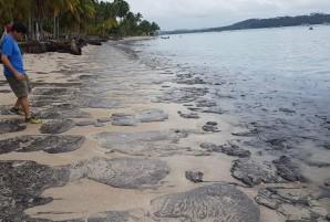 Praia de Carneiros, em Pernambuco, amanheceu com óleo