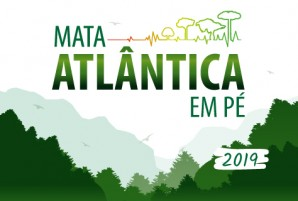 1568637355Mata_atlantica