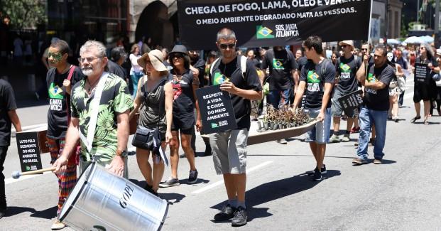 Finados Ambiental - SOS Mata Atlântica