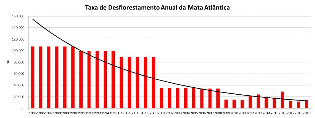 desmatamento na Mata Atlântica,desmatamento,Mata Atlântica